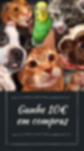 wall-of-fame-pets.png