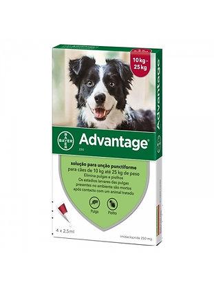 Advantage cão 10 - 25 kg