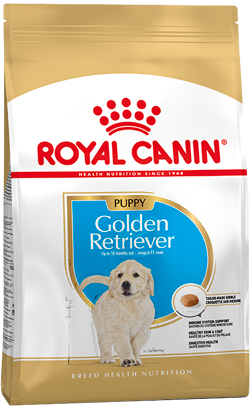Royal Canin Golden Retriever Júnior 12 Kg
