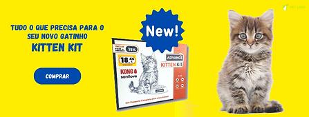 Kitten-kit.png