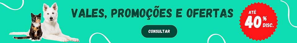CÓDIGOS_PROMOCIONAIS.png