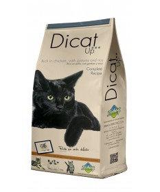 Dicat Up COMPLETE RECIPE 3 kg