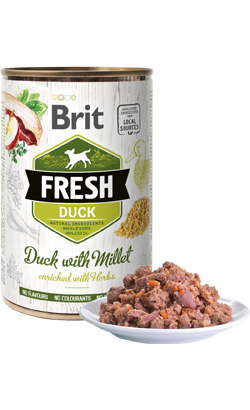 Brit Fresh Dog Duck with Millet - Wet (Lata) - 6 x 400 g