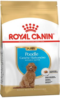 Royal Canin Caniche Puppy 500 g