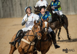 41. Arena Polo Test Match 2017 (JP_C0313)