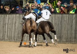 23. Arena Polo Test Match 2017 (JP_C0235)