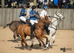 37. Arena Polo Test Match 2017 (JP_C0301)