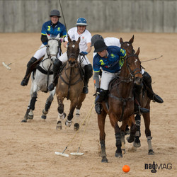 60. Arena Polo Test Match 2017 (JP_C0404)