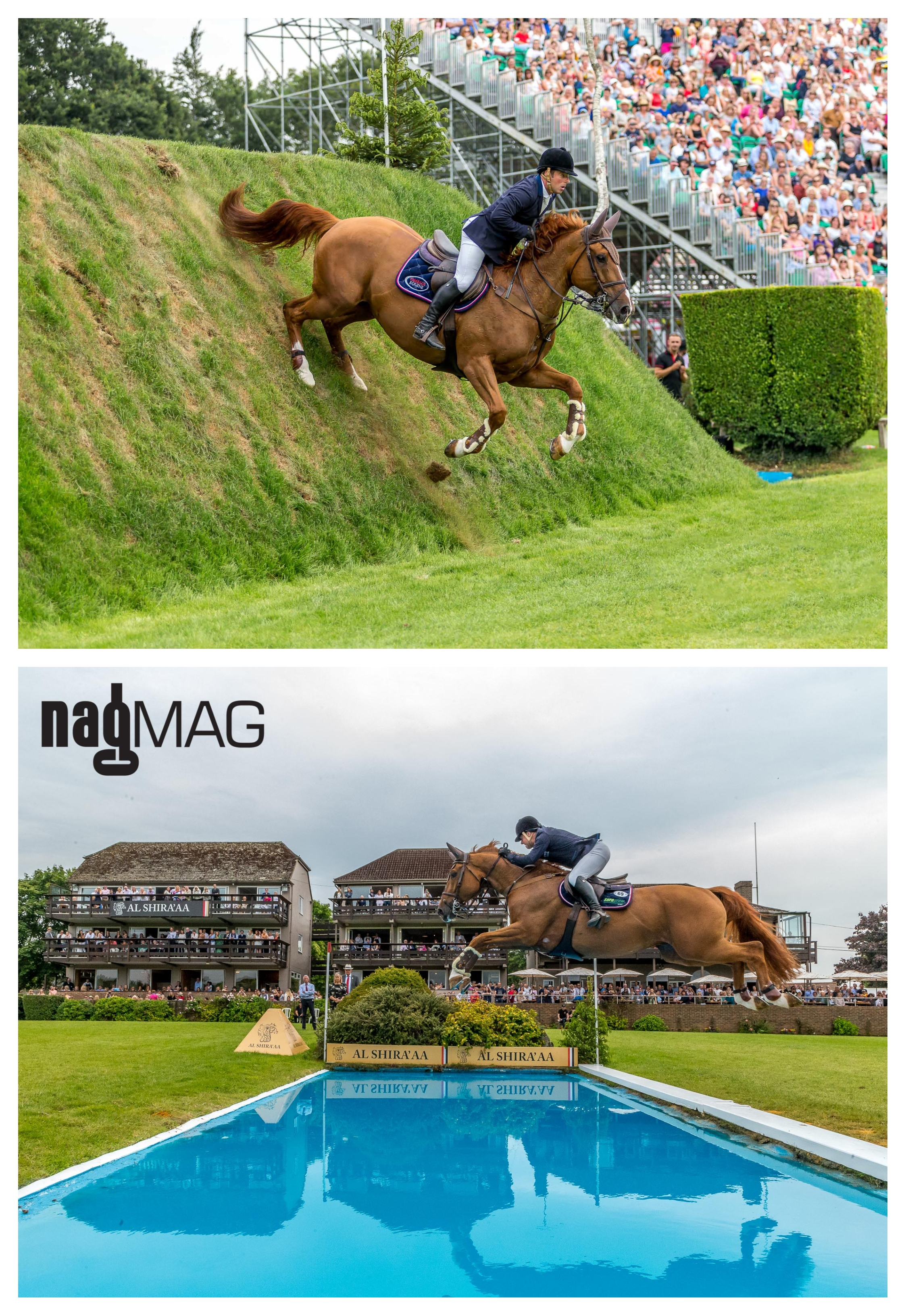 Robert Whitaker and MAJOR DELACOUR in the Al Shira'aa Derby at Hickstead 2019
