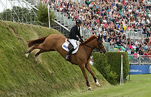 The winner of The Derby, Hickstead 2016