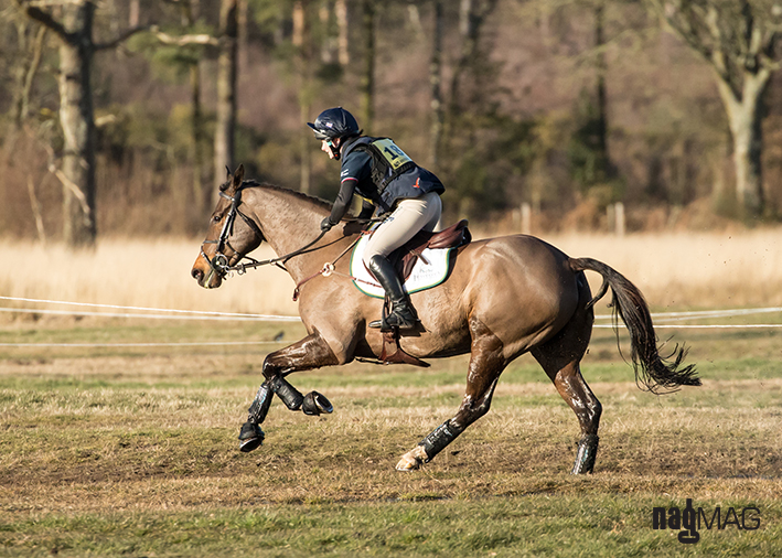 Tweseldown Horse Trials 2018