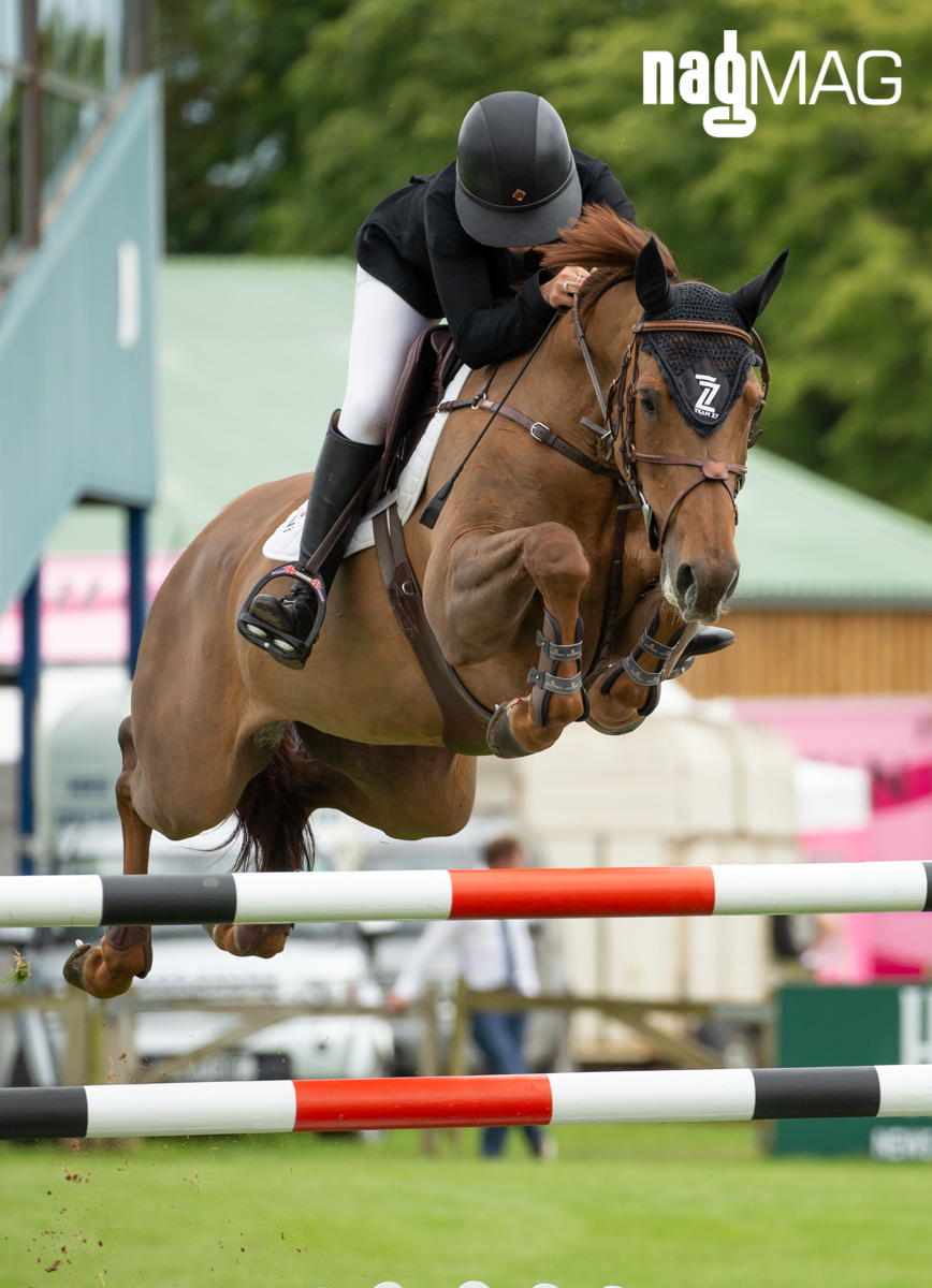 Al Shira'aa Hickstead Derby Meeting