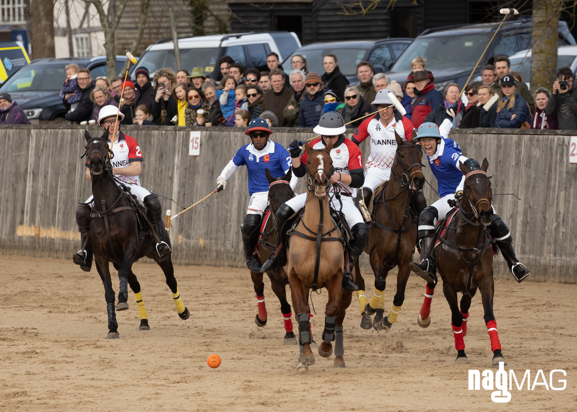 International Arena Polo Test Match