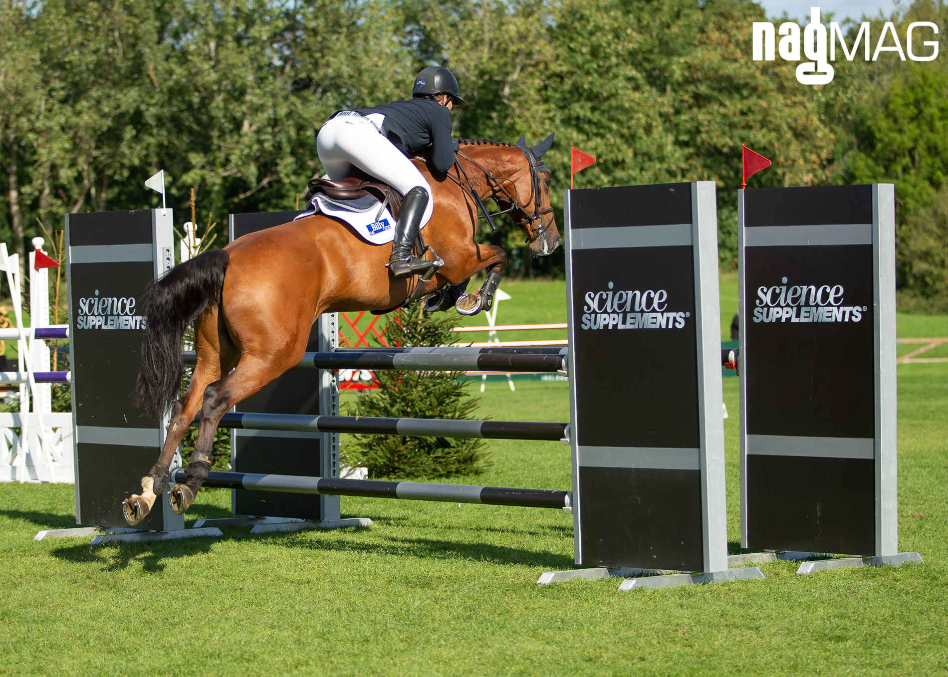 Winner - Lucy Townley on BILLY VITAINI14
