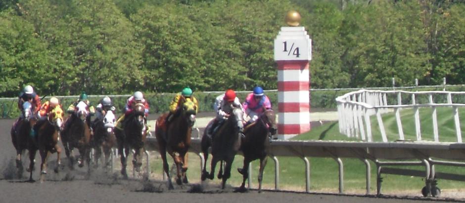 Entendiendo una pista de carrera...Los postes, su importancia y que indican durante la carrera.