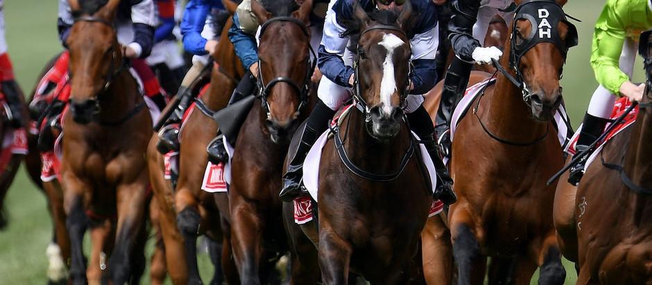 La adaptación del caballo previo a la carrera