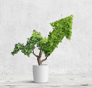 Nachhaltigkeit-nachhaltiges-investieren-