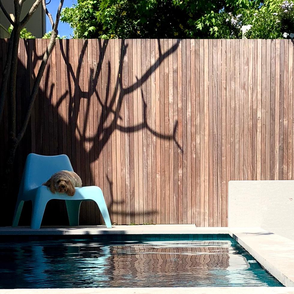 Plunge pool garden landscape designer