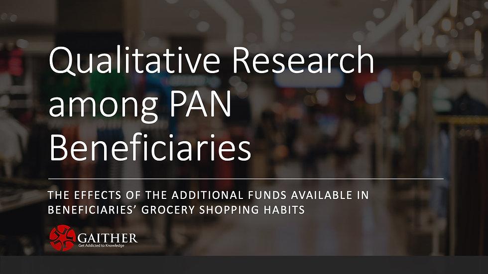 Puerto Rican Pan Beneficiaries' Insights - 2019