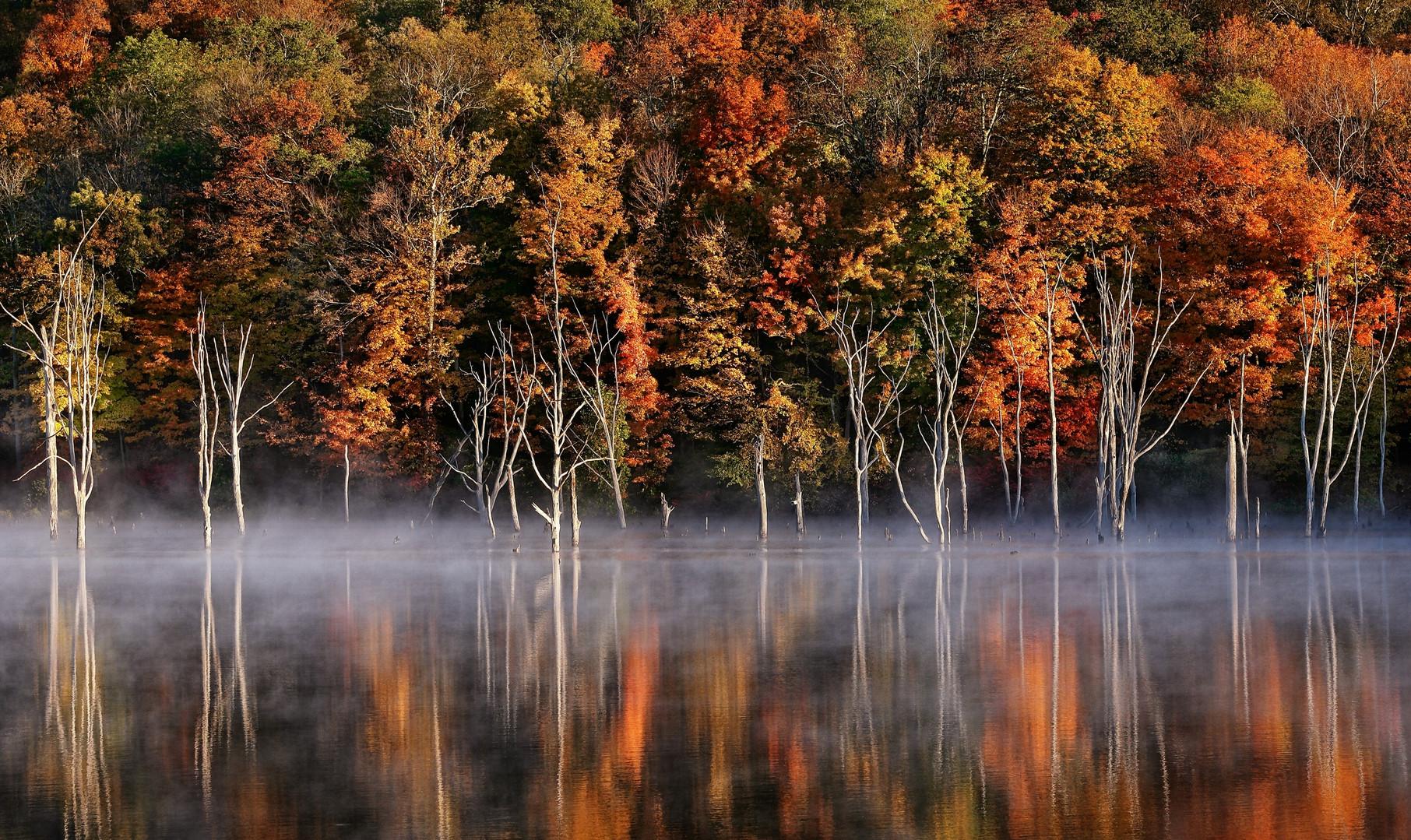 Monksville Reservoir Morning Mist - West Milford, NJ