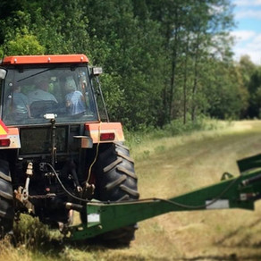 Make Hay While July Shines
