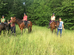 farm ride