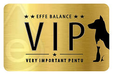 effebalance_vip_puppy_kortti_2019.jpg