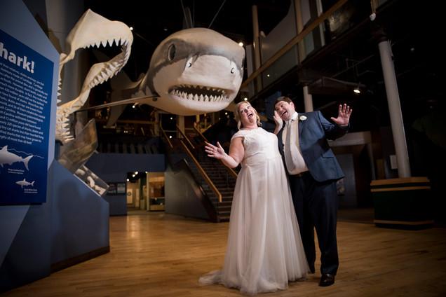 South Carolina State Museum Wedding Venue