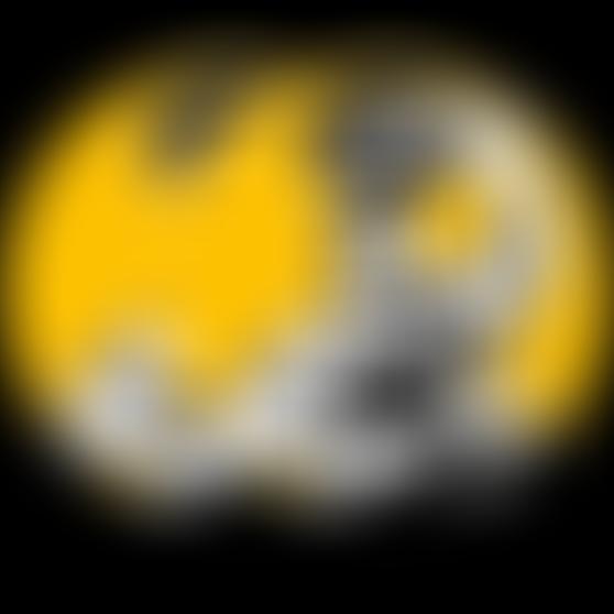bs-steelydan-yellow-pair.png