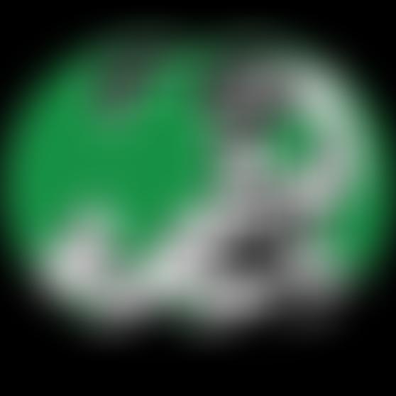 bs-steelydan-green-pair.png