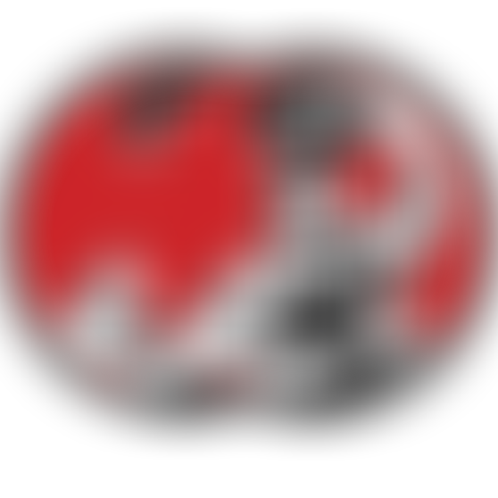 bs-steelydan-red-pair.png