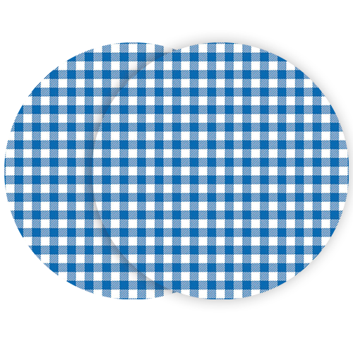 bs-gingham-blue-pair.png