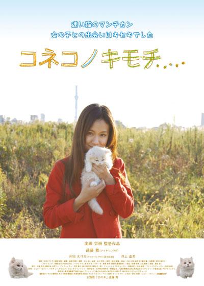 コネコノキモチ(2011)