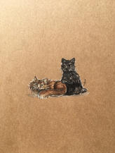 Cats drawing Lucie Schrimpf