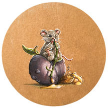 Mouse on a fruit lucie schrimpf