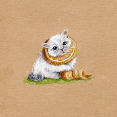 Chat cheshire alice siberian lucie schrimpf drawing