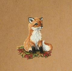 Fox draxing Lucie Schrimpf