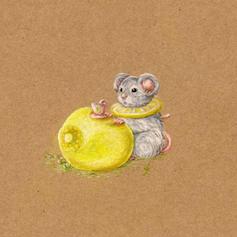 Souris citron.jpg