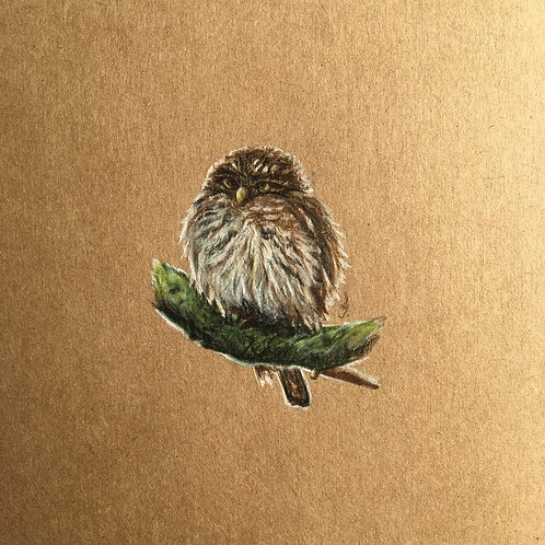 "Original Art ""Owl portrait"""