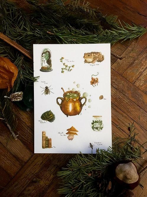 "Postcard ""Witch cabinet"" Lucie Schrimpf"