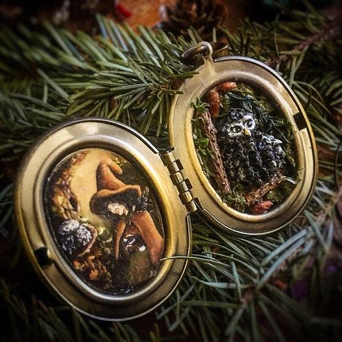 "Locket Terrarium Miniature ""Maga Physalis"""