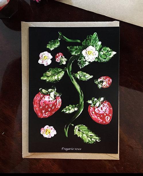 "Postcard ""Fragaria fresca"" Lucie Schrimpf"