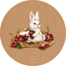 strawberry bunny white rabbit lucie schrimpf