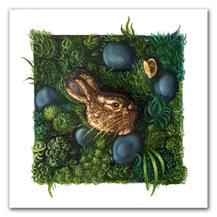lapin lièvre peinture lucie schrimpf illustration