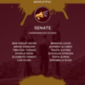 Amplify Senate Slate Sprin 2020