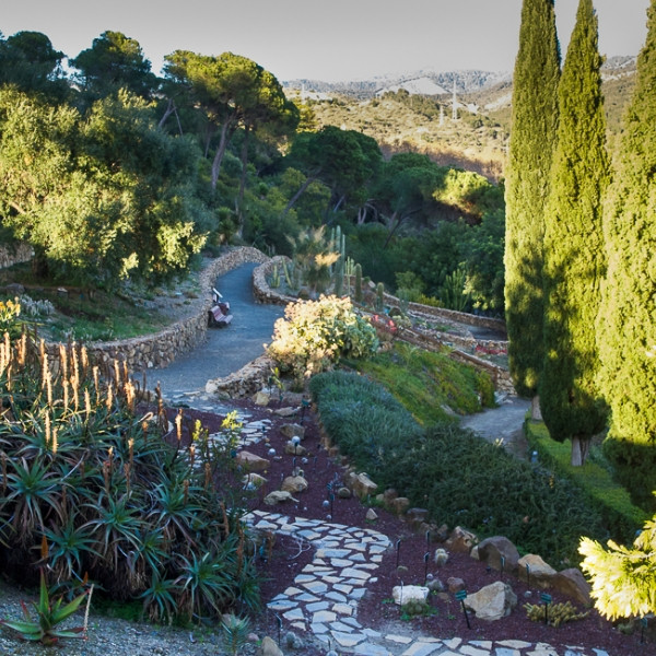 Zone cactus jardin botanique