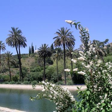 Lagon jardin botanique