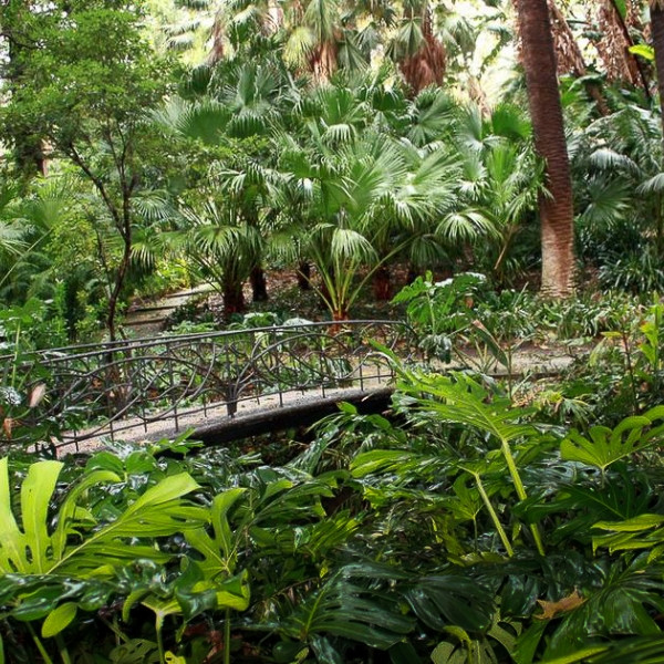 Jardin botanique de Malaga
