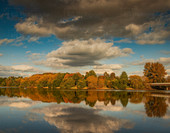 Reflecting Trees of Alton Water
