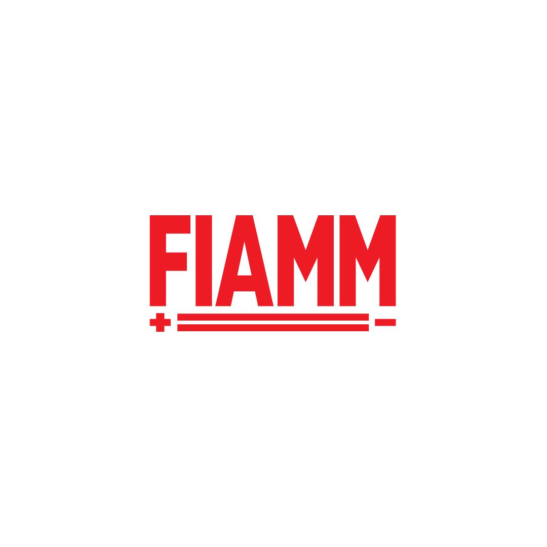 FIAMM.png